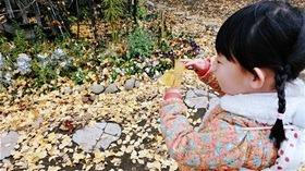 ★高階幼稚園@川越・ふじみ野CIMG0222