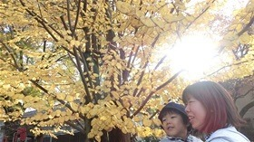 ★高階幼稚園@川越・ふじみ野CIMG7643