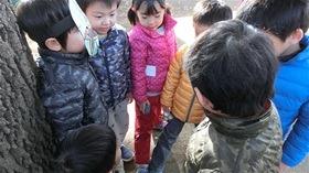 ★高階幼稚園@川越・ふじみ野CIMG1163