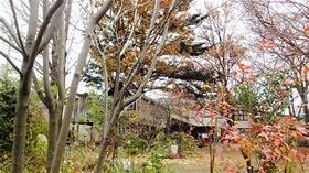 ★幼稚園@川越市・ふじみ野市・さいたま市DSCF0368