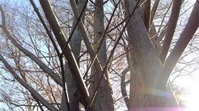 ★幼稚園@川越市・ふじみ野市・さいたま市DSCF0567