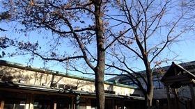 ★幼稚園@川越市・ふじみ野市・さいたま市DSCF1009