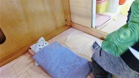 ★幼稚園@川越市・ふじみ野市・さいたま市CIMG8464