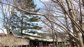 ★幼稚園@川越市・ふじみ野市・さいたま市DSCF2649