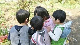 ★幼稚園@川越市・ふじみ野市・さいたま市CIMG3722