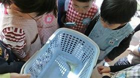 ★幼稚園@川越市・ふじみ野市・さいたま市CIMG4361