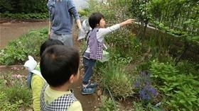 ★幼稚園@川越市・ふじみ野市・さいたま市CIMG4522