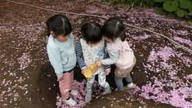 ★幼稚園@川越市・ふじみ野市・さいたま市CIMG4846