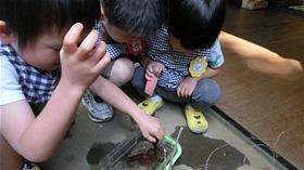 ★幼稚園@川越市・ふじみ野市・さいたま市CIMG5265