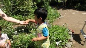 ★幼稚園@川越市・ふじみ野市・さいたま市CIMG6957