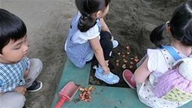 ★幼稚園@川越市・ふじみ野市・さいたま市CIMG0070