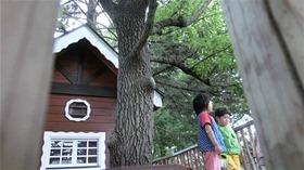 ★幼稚園@川越市・ふじみ野市・さいたま市CIMG8270