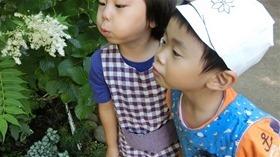 ★幼稚園@川越市・ふじみ野市・さいたま市CIMG8424 - コピー