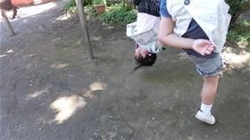 ★幼稚園@川越市・ふじみ野市・さいたま市CIMG8470