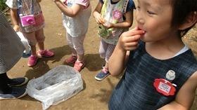 ★幼稚園@川越市・ふじみ野市・さいたま市CIMG8536