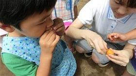 ★幼稚園@川越市・ふじみ野市・さいたま市CIMG8551