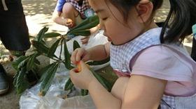 ★幼稚園@川越市・ふじみ野市・さいたま市CIMG8585