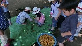★幼稚園@川越市・ふじみ野市・さいたま市CIMG8793