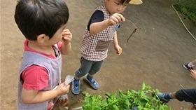 ★幼稚園@川越市・ふじみ野市・さいたま市CIMG9356