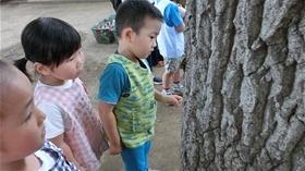 ★幼稚園@川越市・ふじみ野市・さいたま市CIMG0847