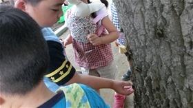 ★幼稚園@川越市・ふじみ野市・さいたま市CIMG0854