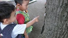 ★幼稚園@川越市・ふじみ野市・さいたま市CIMG1139