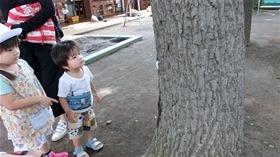 ★幼稚園@川越市・ふじみ野市・さいたま市CIMG1147