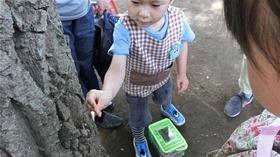 ★幼稚園@川越市・ふじみ野市・さいたま市CIMG1164