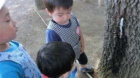 ★幼稚園@川越市・ふじみ野市・さいたま市CIMG1633