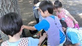 ★幼稚園@川越市・ふじみ野市・さいたま市CIMG1654