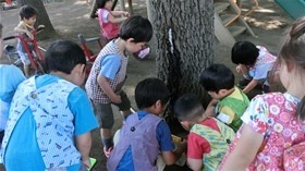★幼稚園@川越市・ふじみ野市・さいたま市CIMG1656