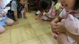 ★幼稚園@川越市・ふじみ野市・さいたま市CIMG1771