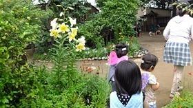 ★幼稚園@川越市・ふじみ野市・さいたま市DSCF3989
