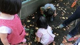 ★幼稚園@川越市・ふじみ野市・さいたま市CIMG3199