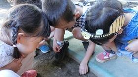 ★幼稚園@川越市・ふじみ野市・さいたま市CIMG4737