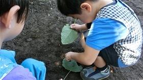 ★幼稚園@川越市・ふじみ野市・さいたま市CIMG5041
