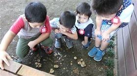 ★幼稚園@川越市・ふじみ野市・さいたま市CIMG5298