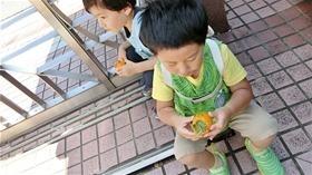 ★幼稚園@川越市・ふじみ野市・さいたま市CIMG6160