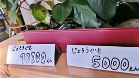★幼稚園@川越市・ふじみ野市・さいたま市CIMG7083
