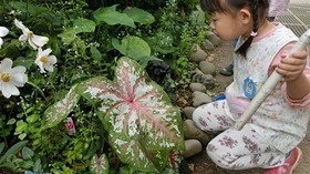 ★幼稚園@川越市・ふじみ野市・さいたま市CIMG7373