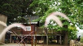★幼稚園@川越市・ふじみ野市・さいたま市DSC09079