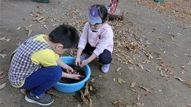 ★幼稚園@川越市・ふじみ野市・さいたま市CIMG4987