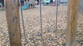 ★幼稚園@川越市・ふじみ野市・さいたま市DSCF8114