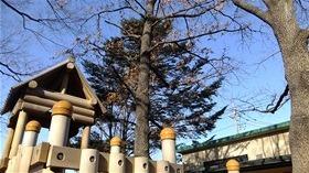 ★幼稚園@川越市・ふじみ野市・さいたま市DSCF8612